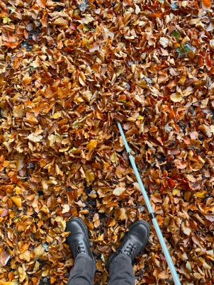 Looking down at my feet as I'm stood in the crisp auburn autumn leaves. I have my guide cane at the side of me. I took out all the colour from my shoes and jeans. So they are black and grey. Shot on iPhone.